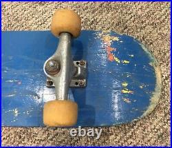 Vintage, Santa Cruz Skateboard Santa Cruz Risqué Fishnet Stocking Girl RARE+